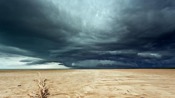 Stormy desert wallpaper