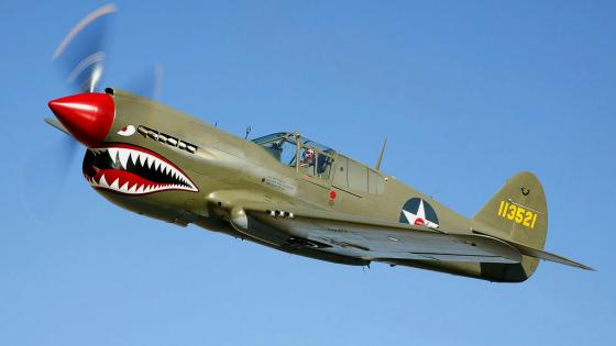 Curtiss P-40 Warhawk - warbird form the WW II wallpaper