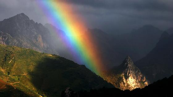 Rainbow above the mountains  wallpaper