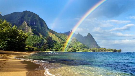 Hawaiian beach with rainbow wallpaper
