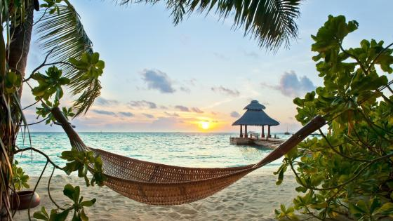 Hammock on the beach in Maldives wallpaper