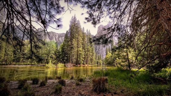 Landscape of Yosemite National Park wallpaper