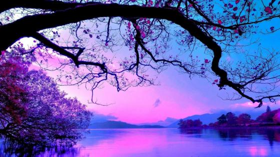 Purplish blue landscape wallpaper