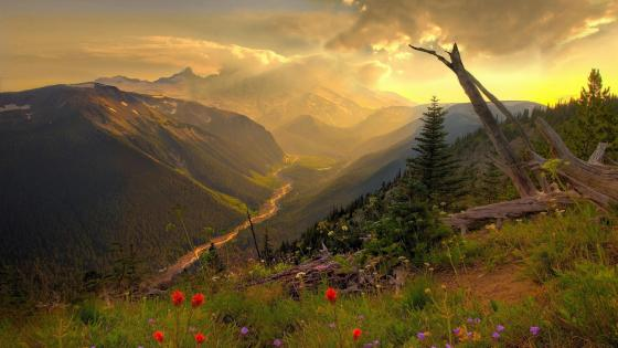 Mountain landscape in the morning sunrise  wallpaper