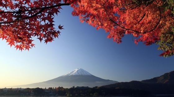 Japan - Mount Fuji landscape ️ wallpaper