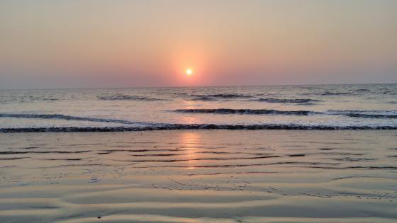 Sunset in the horizon wallpaper