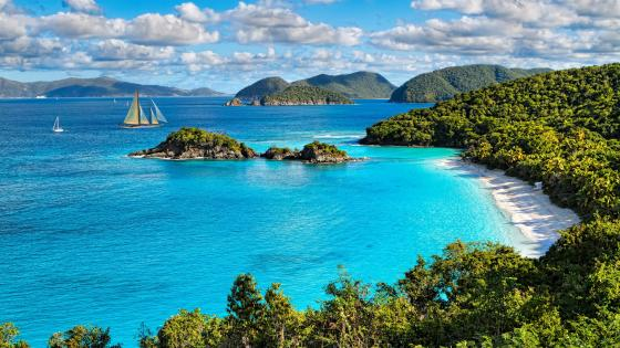 Trunk Bay - Virgin Islands National Park wallpaper