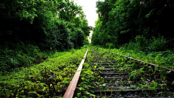 Abandoned railway line wallpaper