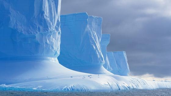 Icebergs on Antarctica wallpaper