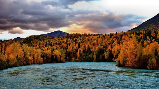 Autumn in Alaska  wallpaper