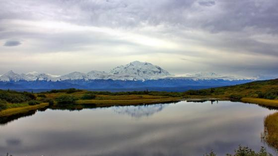 Denali National Park - Alaska wallpaper