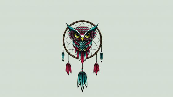 Owl dream catcher wallpaper