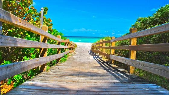 Path to Miami Beach ☀️ wallpaper