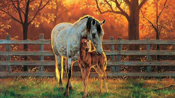 Horse family wallpaper