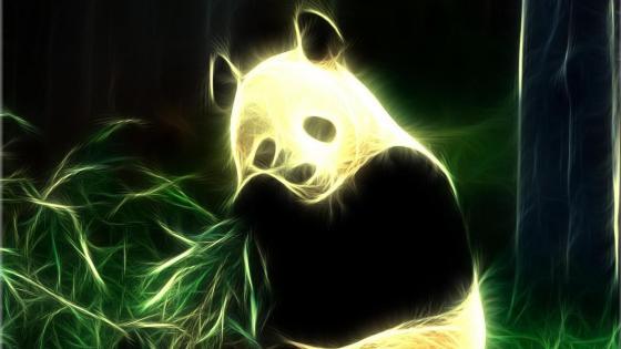 Neon Panda wallpaper