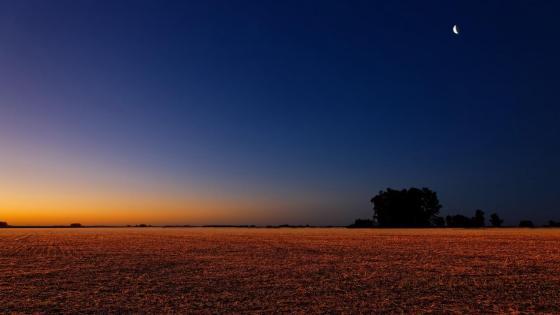 Sunrise above the plain ☀️ wallpaper