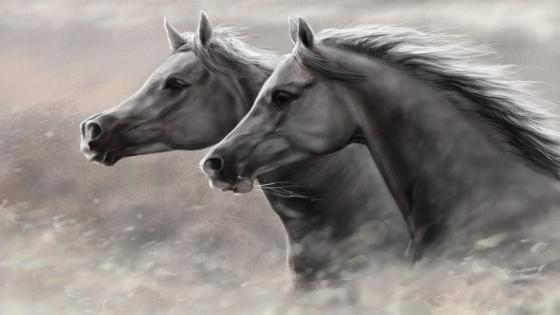 Horse art wallpaper