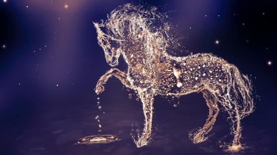 Water drop horse digital art wallpaper
