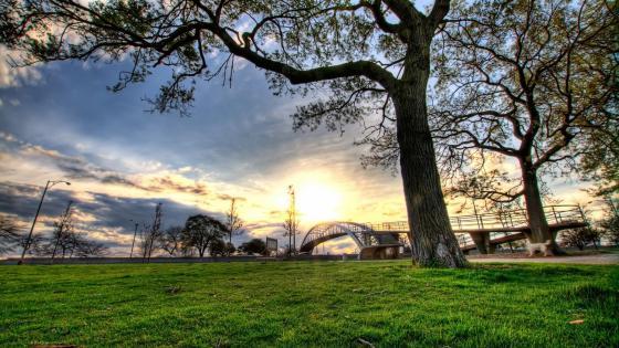 Sunrise in the park wallpaper