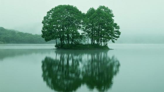 Reflected island wallpaper