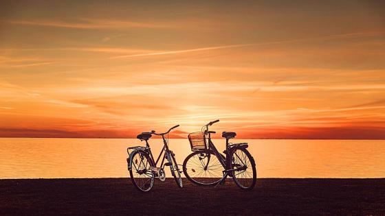 Bicycles in the sunset wallpaper