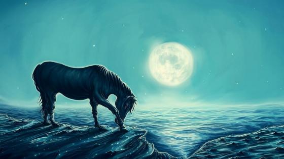 Horse in the moonlit fantasy art wallpaper