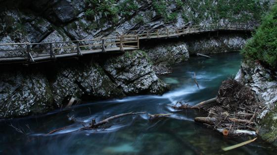 The Vintgar gorge - Bled, Slovenia wallpaper