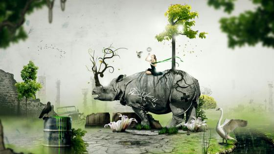 Girl on a Rhinoceros wallpaper