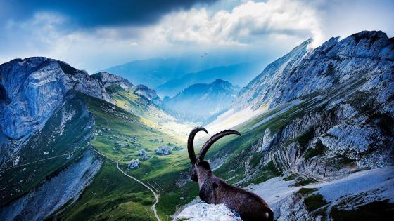 Mount Pilatus - Switzerland wallpaper