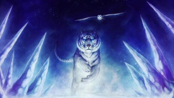White tiger with a flying owl - Fantasy art wallpaper