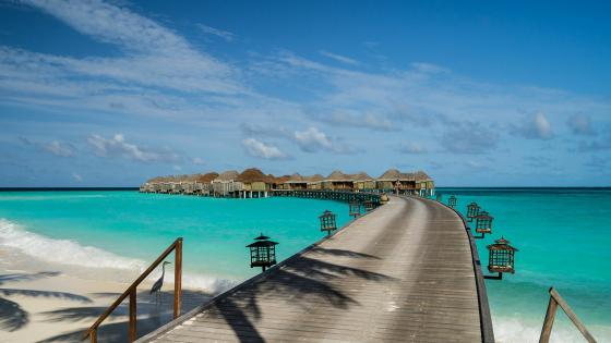 Overwater bungalows in the Maldives wallpaper