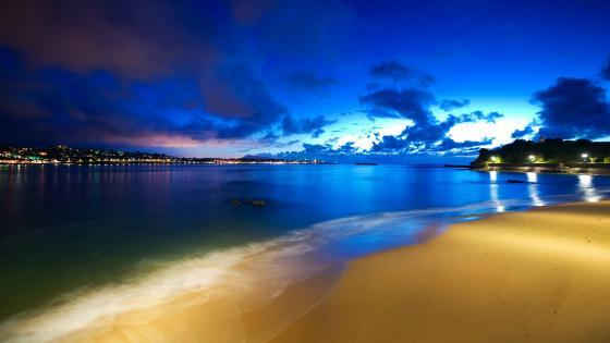Night sky over the beach wallpaper