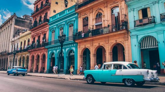 Colorful Havana with vintage cars wallpaper