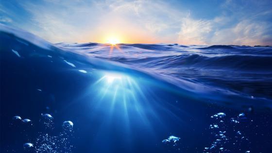 Sunlight under the water wallpaper