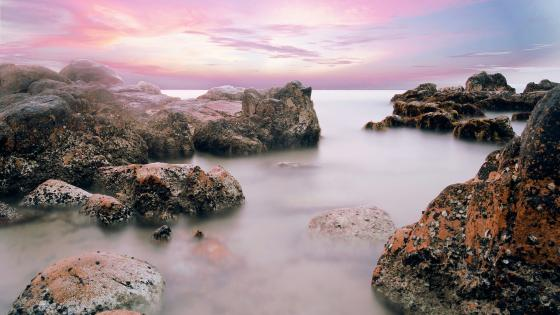 Co Thach beach - Phan Thiet, Vietnam wallpaper