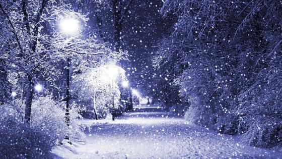 Snowing in the park wallpaper