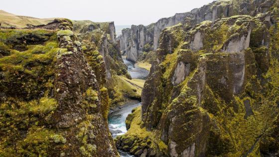 Fjaðrárgljúfur canyon - Iceland wallpaper