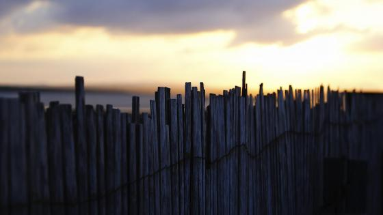 Fence under the sky in the afternoon wallpaper