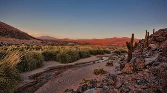 Atacama Desert creek wallpaper