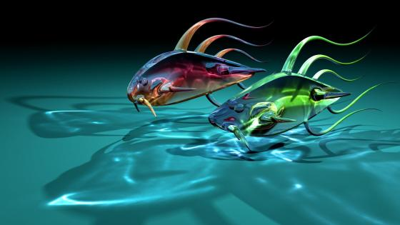 3D translucent fishes wallpaper