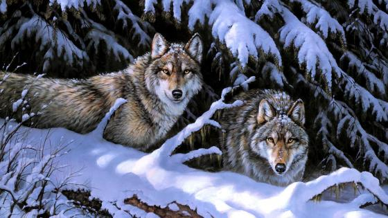 Wolf couple in the snow painting art wallpaper