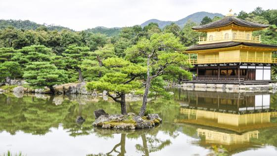 Kinkaku-ji - Temple of the Golden Pavilion wallpaper