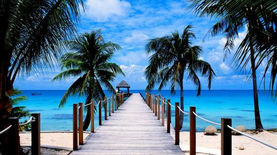 Long pier over the blue sea wallpaper