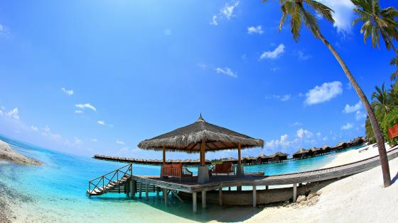 Vacation in the Indian Ocean beach - Maldives wallpaper