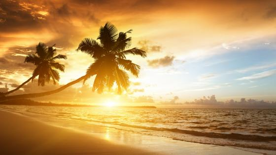 Sunset over the Marari Beach, India wallpaper