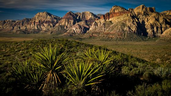 Red Rock Canyon landscape wallpaper
