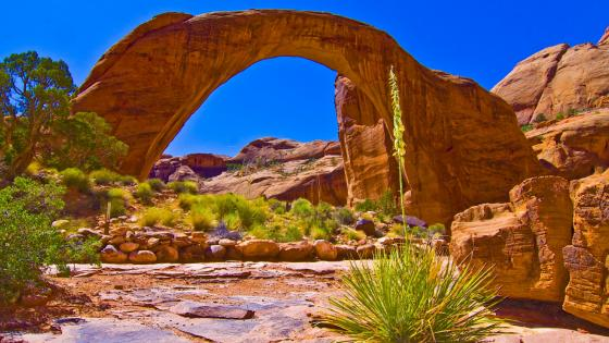Rainbow Bridge National Monument - Sacred Navajo land in Utah wallpaper