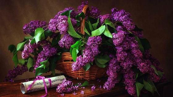 Basket full of flowers wallpaper