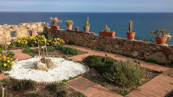 Garden near the sea wallpaper
