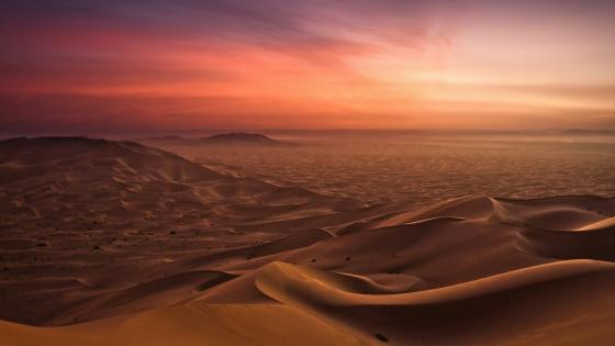 Sunrise in the Western Sahara wallpaper